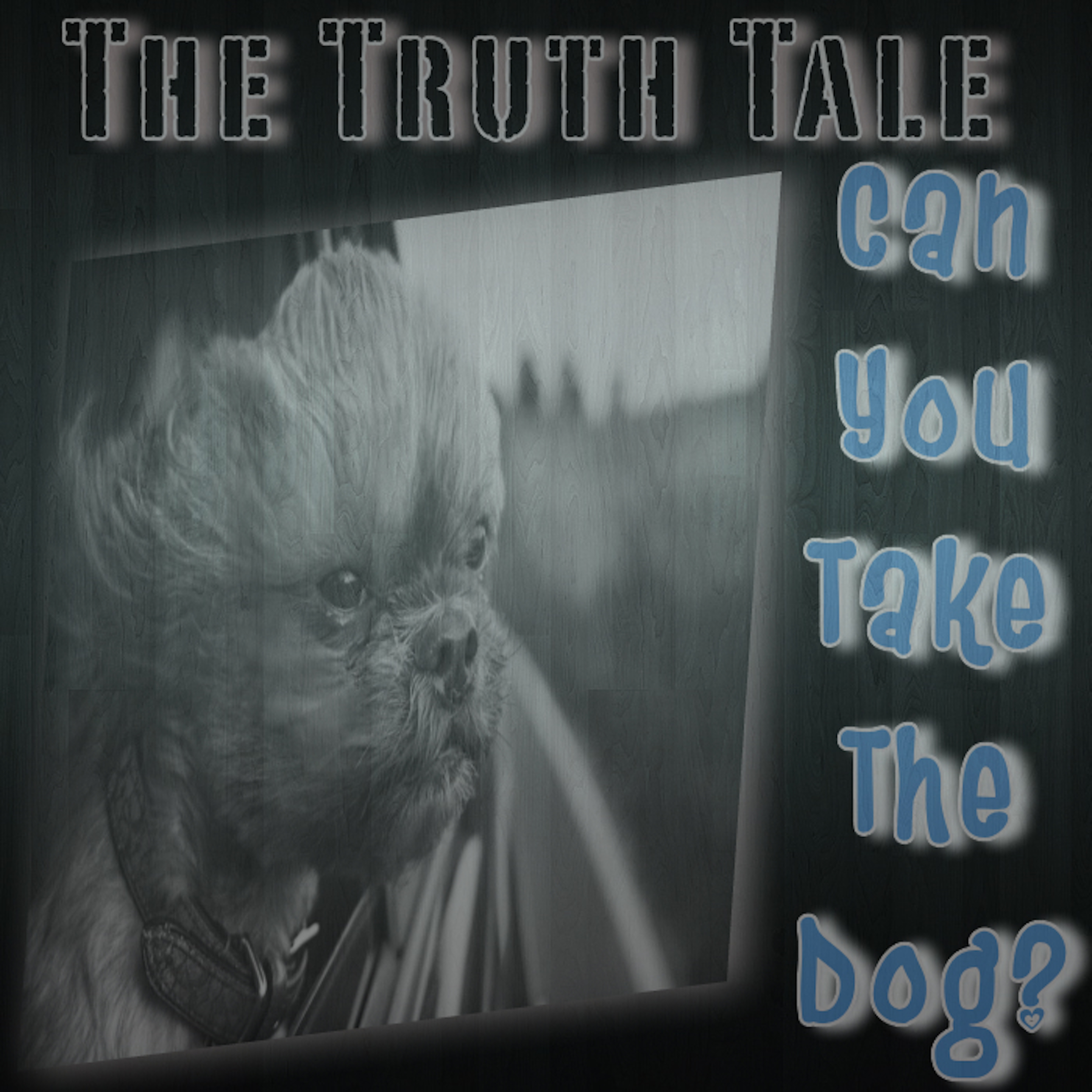 Can You Take The Dog?